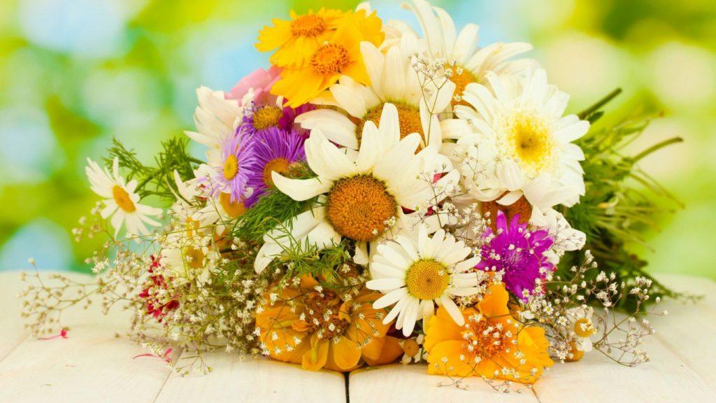 Красивые картинки цветов на рабочий стол - скачать подборка №1 6