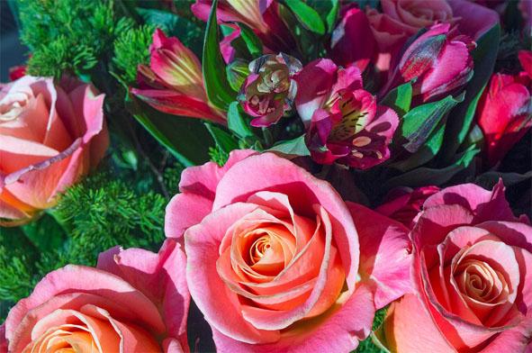 Очень красивые картинки цветов и букетов - скачать бесплатно 2