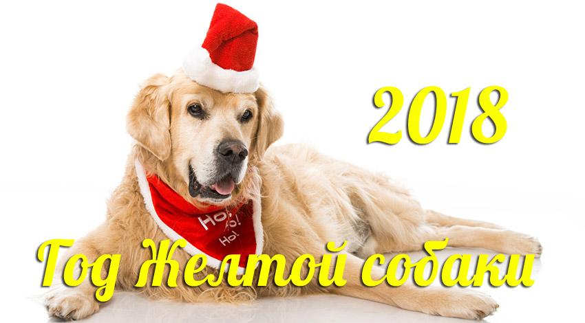 Поздравления С Новым годом собаки 2018 - картинки и открытки 16