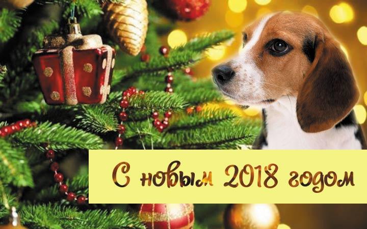 Поздравления С Новым годом собаки 2018 - картинки и открытки 2