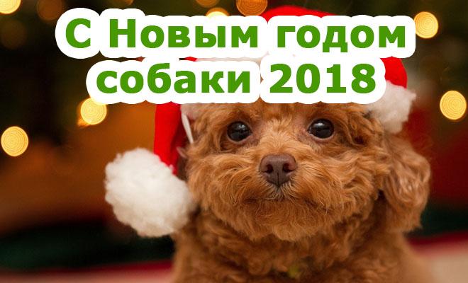 Поздравления С Новым годом собаки 2018 - картинки и открытки 5