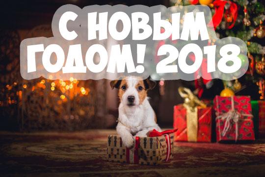 Поздравления С Новым годом собаки 2018 - картинки и открытки 9