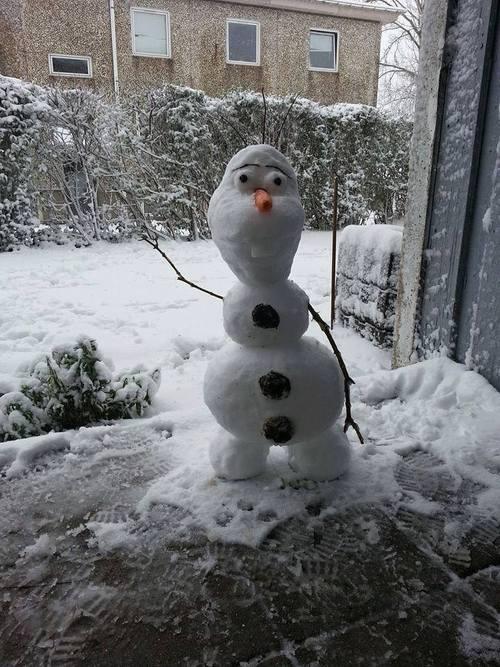 Веселые и смешные картинки про зиму и снег - забавная подборка №23 3