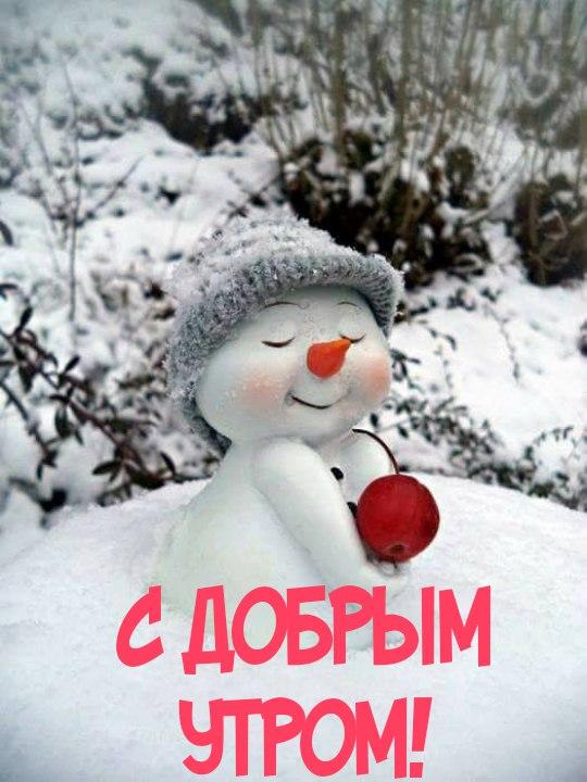 Доброго зимнего утра и хорошего дня - красивые картинки и открытки 9