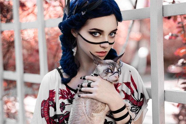 Картинки на аву кошки и коты - самые интересные и невероятные 10