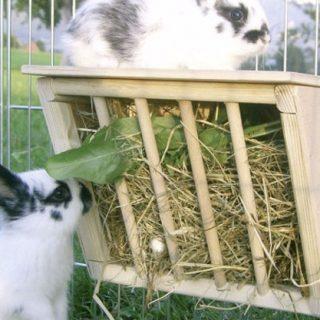 Кормушки для кроликов своими руками - какие выбрать, преимущества 2