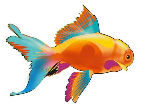 Красивые и прикольные картинки рыб для детей - лучшая подборка 5