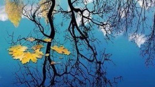 Красивые картинки природы на телефон обои - скачать бесплатно, 2018 17
