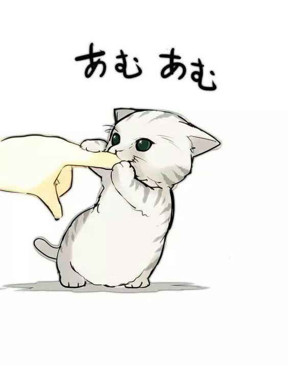 Рисунки котиков и кошек для срисовки - красивые и прикольные 6