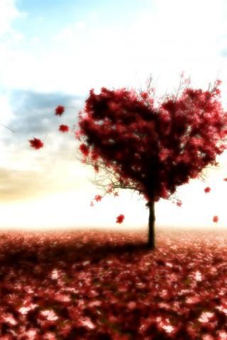 Скачать бесплатно красивые картинки про любовь на телефон - коллекция 1
