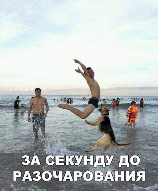 Смешные и веселые картинки с надписями про людей - подборка №28 1