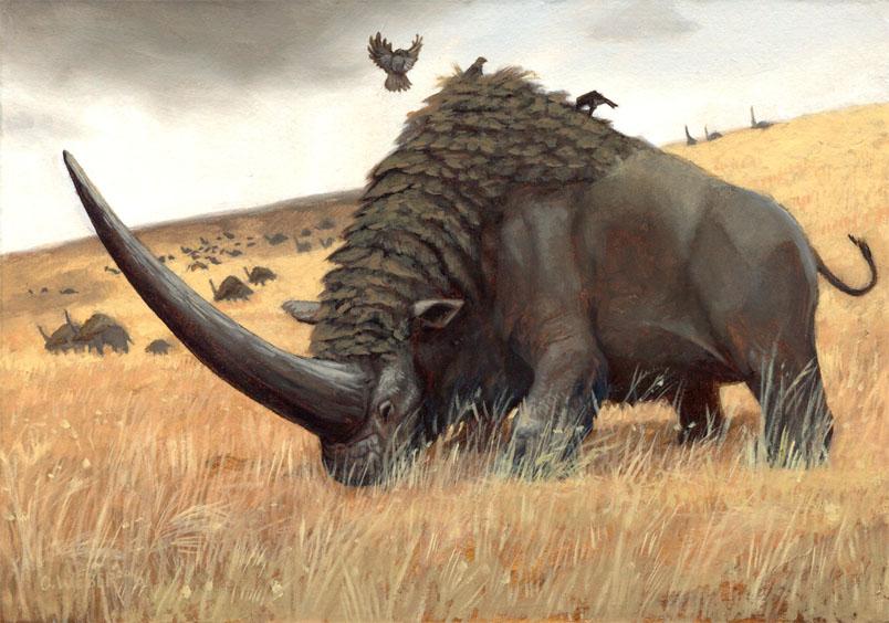 Elasmotherium - огромный волосатый единорог, который обитал на Земле 29 000 лет назад 8