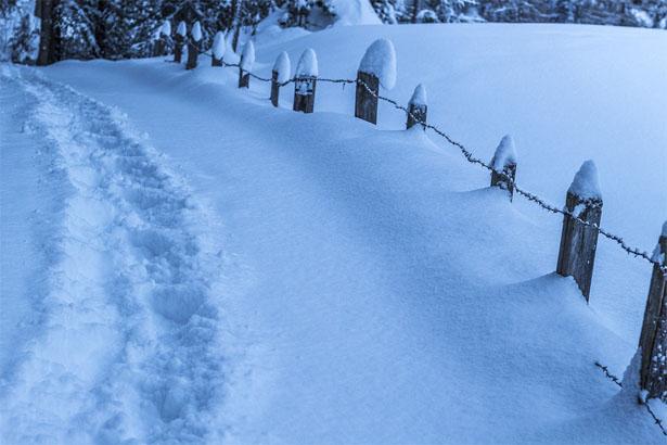 В США из-за снегопадов отменили более 1500 авиарейсов - новости 1