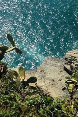Красивые и прикольные картинки, фото природы на заставку телефона 20