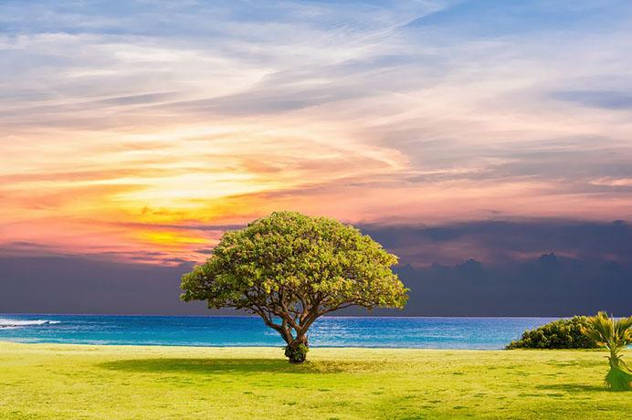 Красивые пейзажи природы фото и картинки - самые удивительные 9