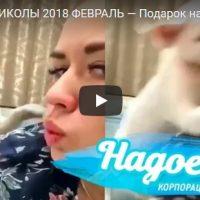Лучшие ржачные и юмористические виде до слез - подборка №83