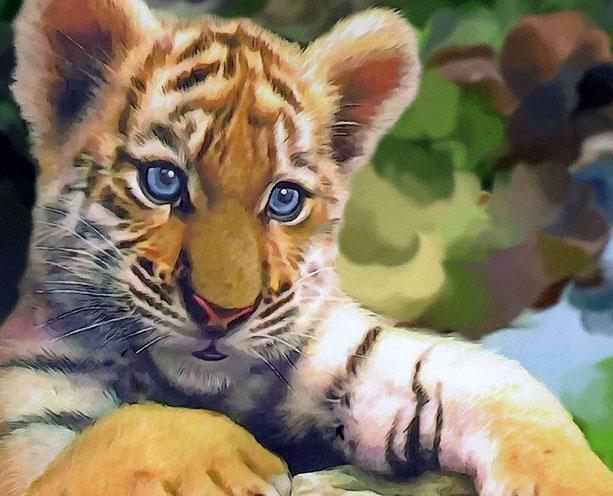 Тигры фото животных, самые необычные и удивительные картинки 17