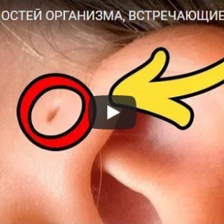 10 особенностей организма, которые можно встретить у 5% людей - видео