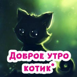"""""""Доброе утро котик"""" - самые красивые и приятные открытки, картинки 12"""