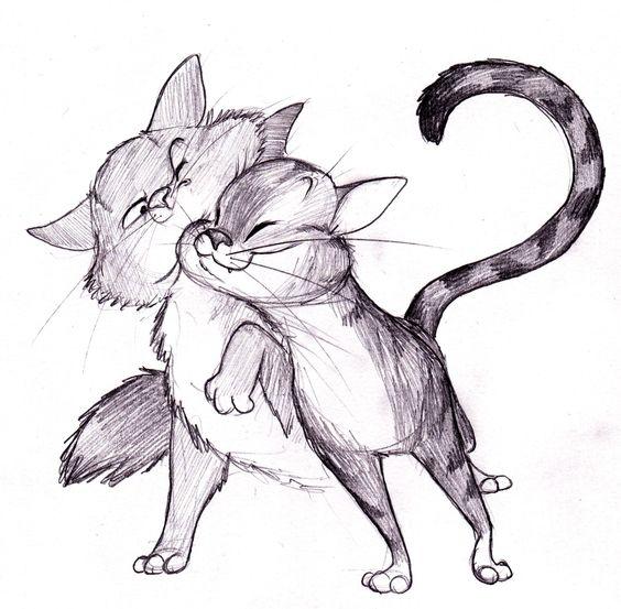 Картинки кошек и котят для срисовки - очень красивые и прикольные 17