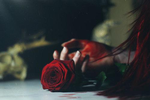 Картинки на аву цветы и букеты - самые красивые и прикольные, скачать 13