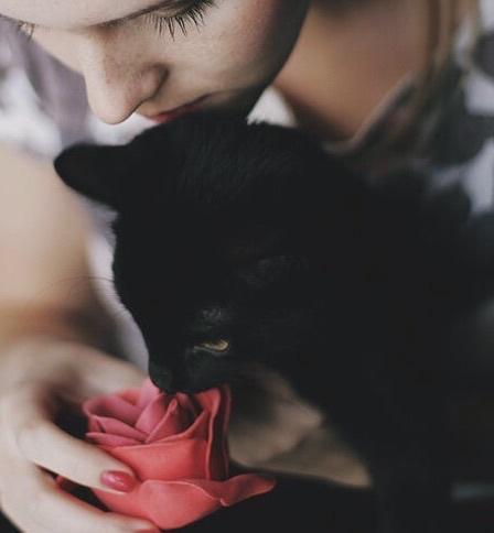 Картинки на аву цветы и букеты - самые красивые и прикольные, скачать 6