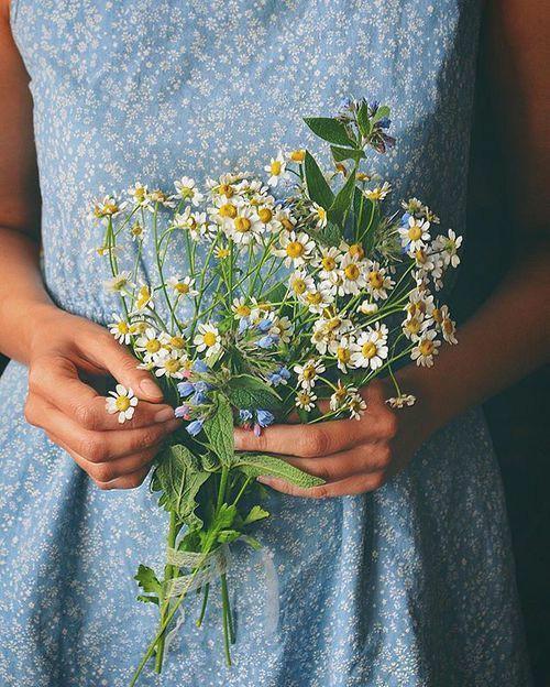 Картинки на аву цветы и букеты - самые красивые и прикольные, скачать 7