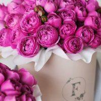Картинки на телефон букеты и цветы - самые красивые и удивительные 10