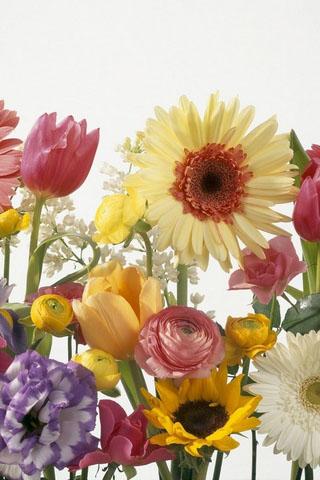 Картинки на телефон букеты и цветы - самые красивые и удивительные 8