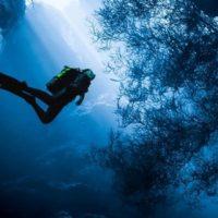 Красивые картинки воды и водного мира на телефон - лучшие заставки №10 7