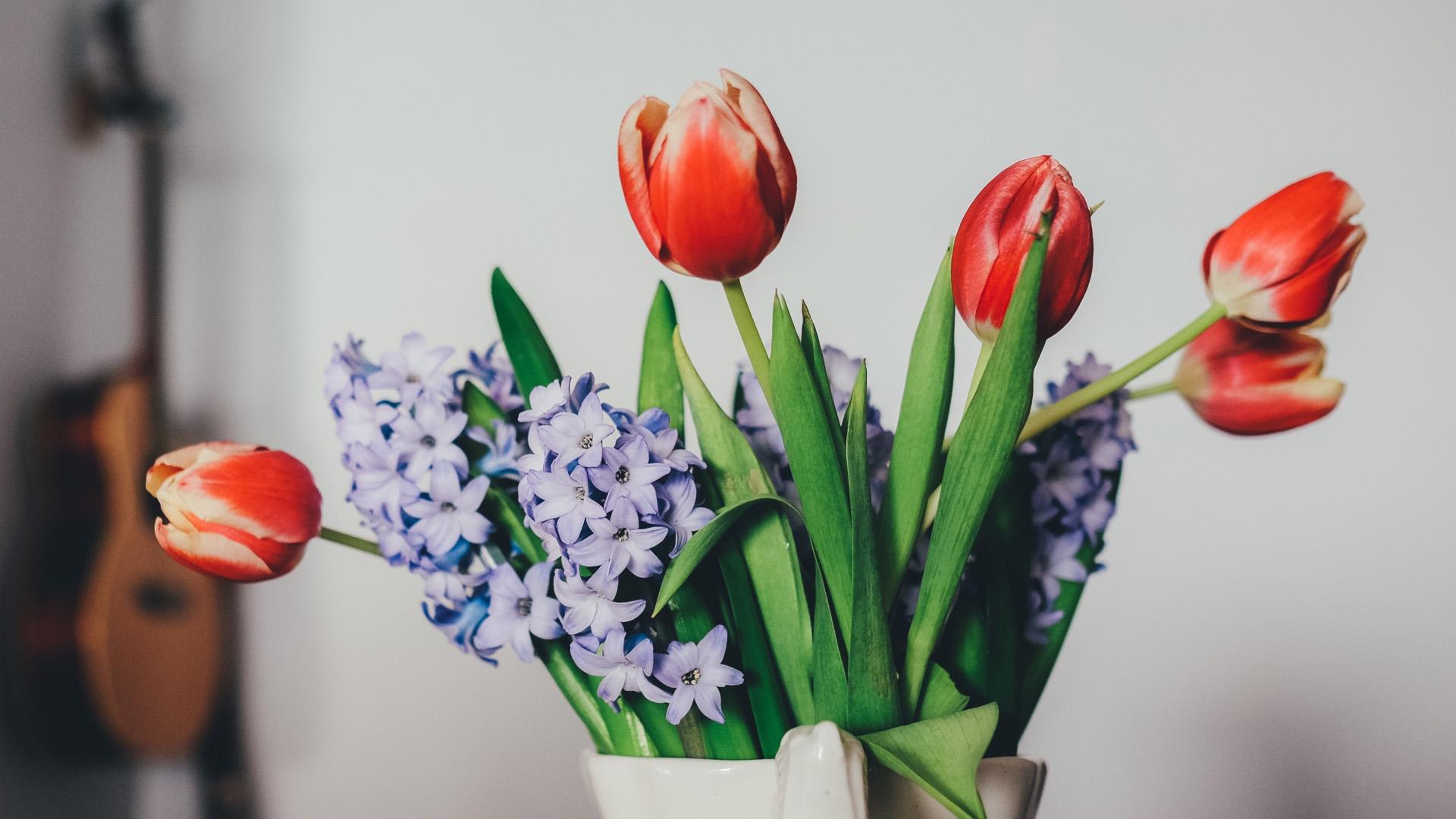 Красивые обои цветов для заставки компьютера - скачать онлайн №7 5