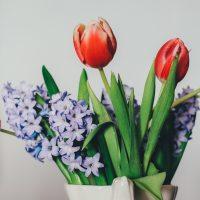 Красивые цветы и букеты на рабочий стол - скачать обои 2018 №6 7