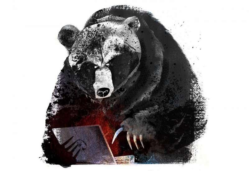 Медведь на картинках и фотках - очень красивые и интересные 10