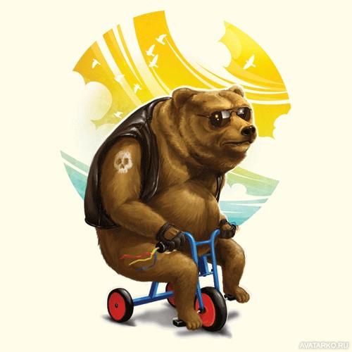 Медведь на картинках и фотках - очень красивые и интересные 14
