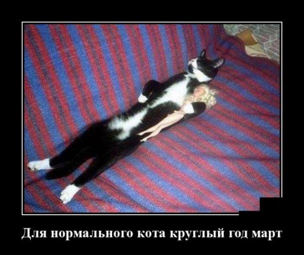 Подборка недельных демотиваторов за март - лучшие фото №24 1