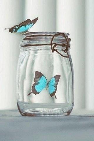 Прикольные и красивые картинки на телефон бабочки - подборка 10