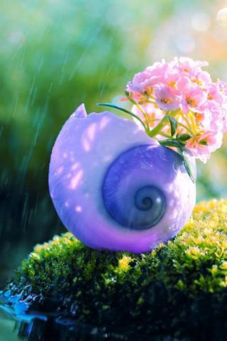 Прикольные и красивые картинки цветов на телефон - скачать бесплатно №2 7