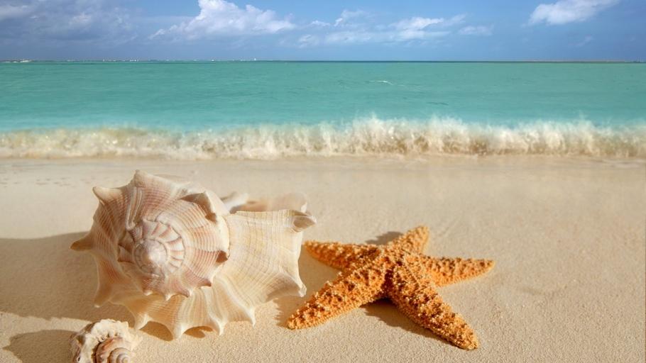 Картинки На берегу моря - коллекция фото, самые удивительные 2