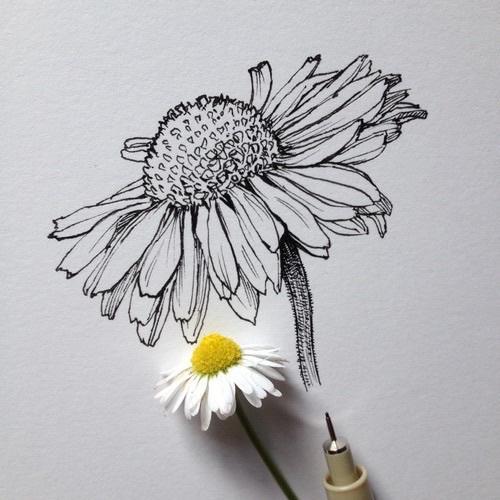 Картинки на аву для девушек нарисованные и рисунки - самые лучшие 10