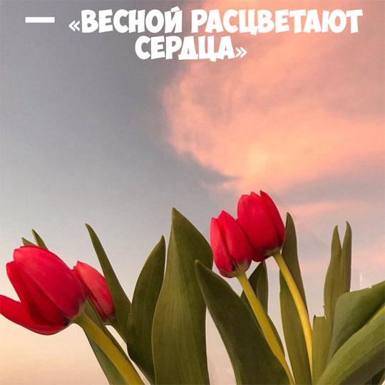 Картинки про весну красивые и интересные - прикольная подборка 3