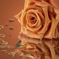 Красивые и блестящие картинки на телефон на заставку 20
