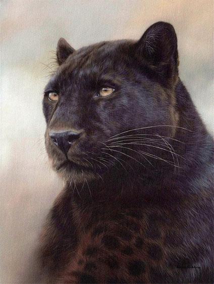 Красивые картинки на аву пантера - самые прикольные и классные 4
