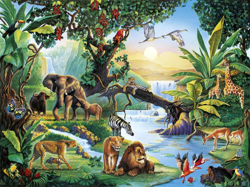 Красивые картинки окружающий мир для детей - лучшая коллекция 14