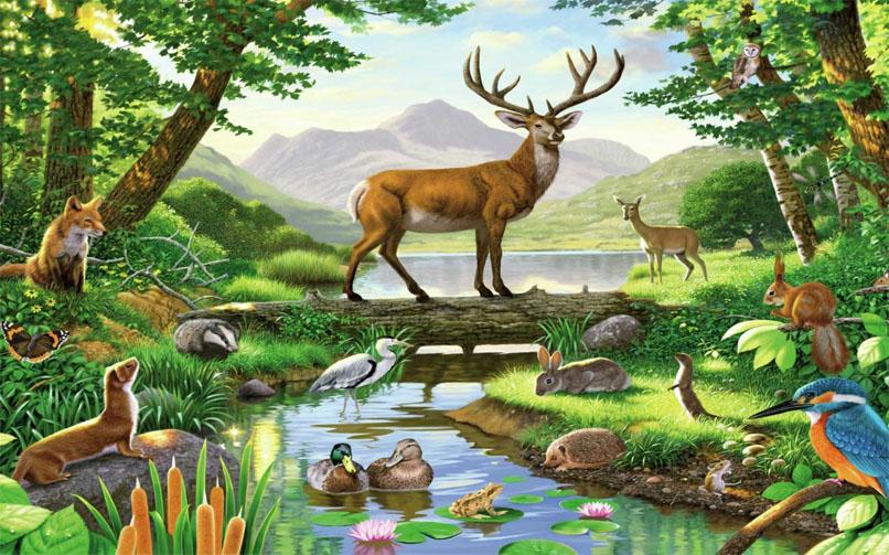 Красивые картинки окружающий мир для детей - лучшая коллекция 18