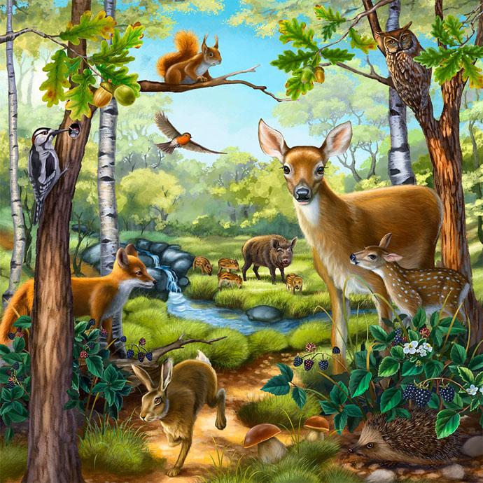 Красивые картинки окружающий мир для детей - лучшая коллекция 4