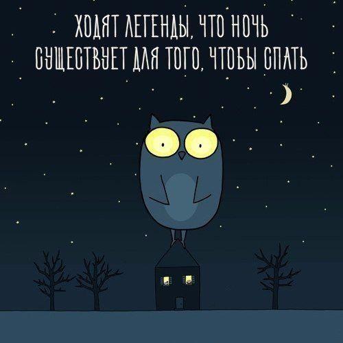 Спокойной ночи картинки - прикольные и смешные с надписями 6