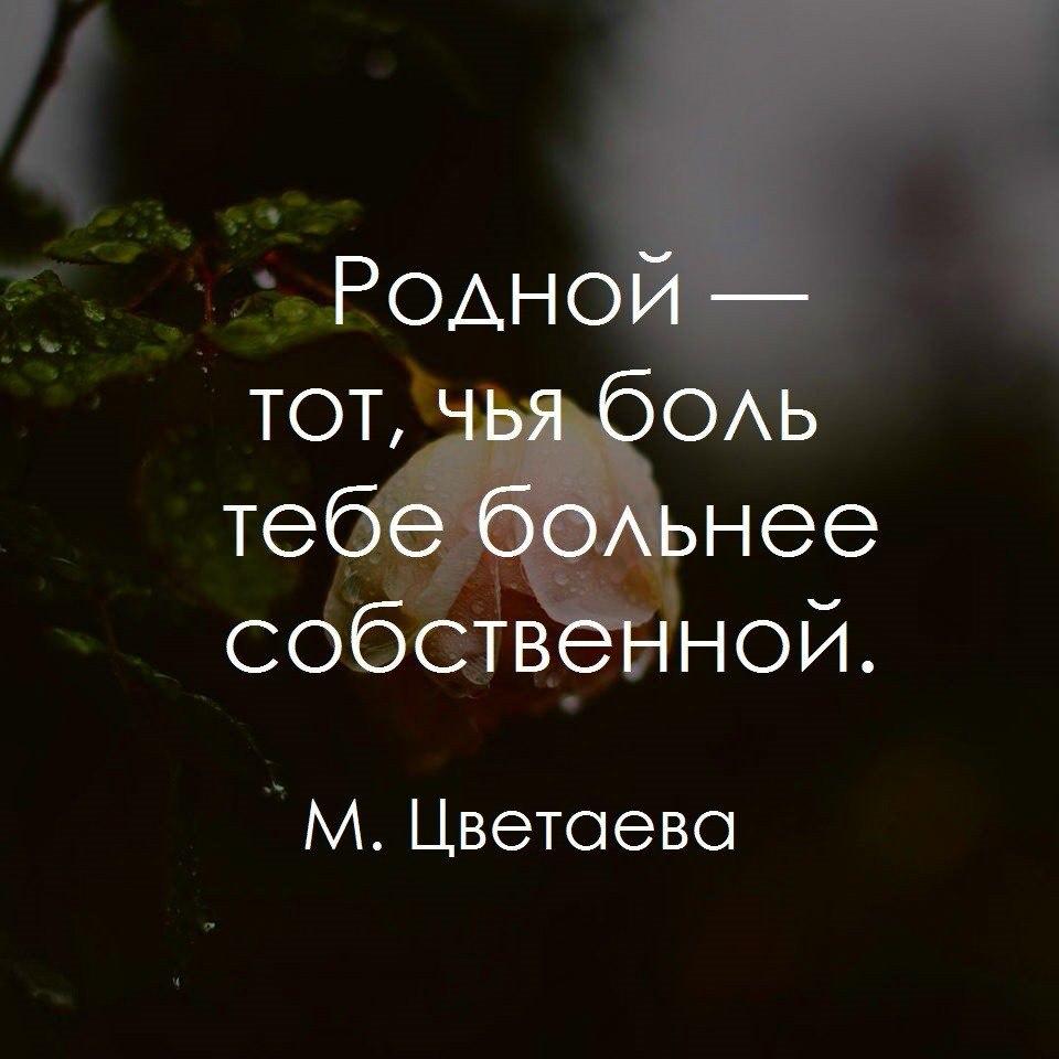Удивительные и мудрые цитаты и статусы про жизнь человека - подборка 3