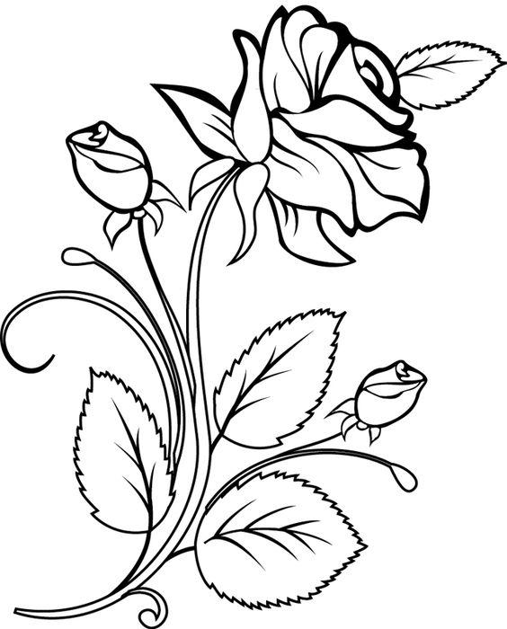 Картинки для срисовки цветы, цветочки - красивые и прикольные 7