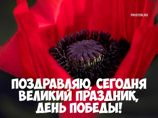Картинки поздравления с 9 Мая День Победы - красивые и прикольные 12