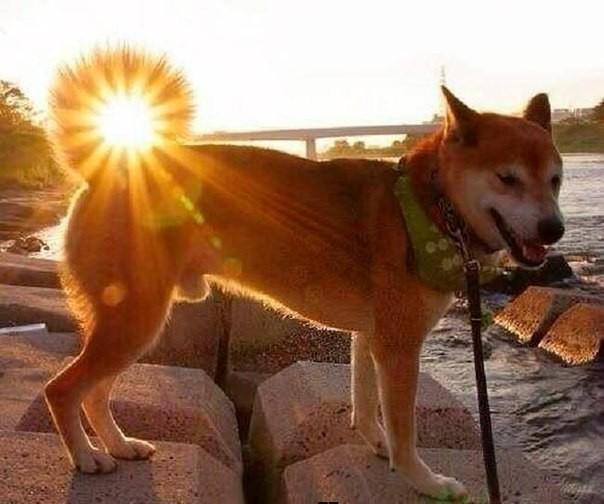 Красивые картинки, как люди держат Солнце руками - подборка 6